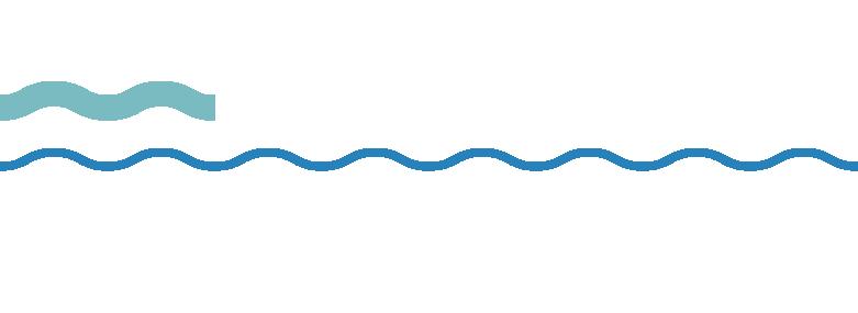 Marine Safety SA logo
